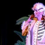 Kindermusical in der Stadthalle: Das Dschungelbuch beim Baunataler Herbstpalast