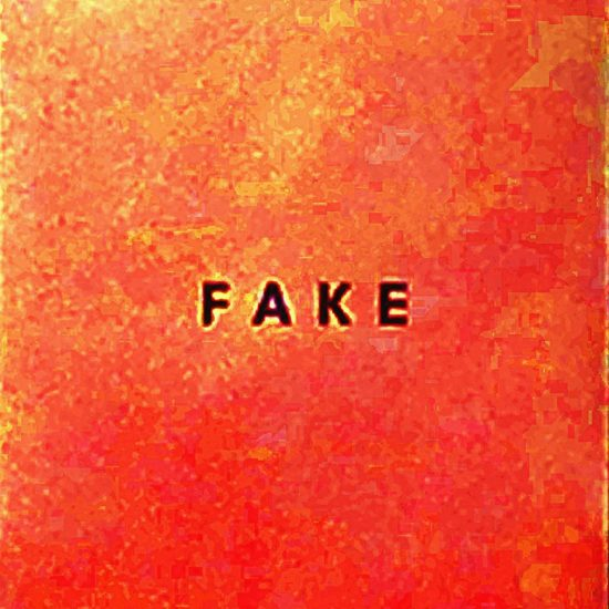 Die Nerven - Fake (Glitterhouse)