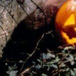 Mega-Halloween an zwei Tagen im Kasseler K 19