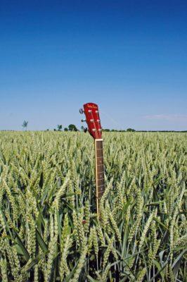 Bands wachsen halt nicht aus dem Boden, sondern müssen sich auf der Bühne beweisen.