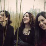 Die Henry Girls – Spektakuläre Gesangsharmonien live in Fritzlar