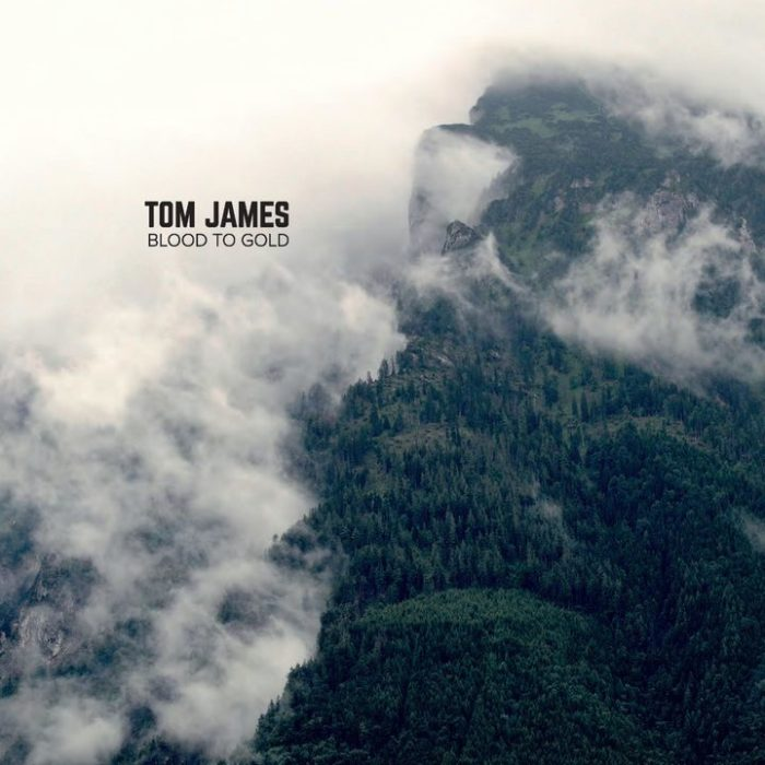 Tom James - Blood To Gold