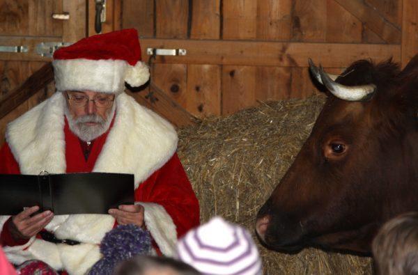 Tierweihnacht auf der Sababurg: Ein weihnachtliches Erlebnis in zauberhafter Natur