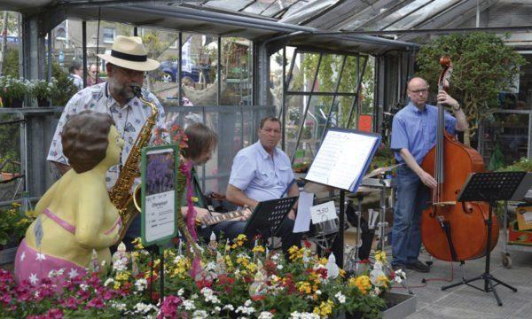 Kunsthandwerkermarkt: Dalchows Gärten