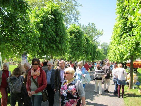 Pflanzenbörse im Botanischen Garten