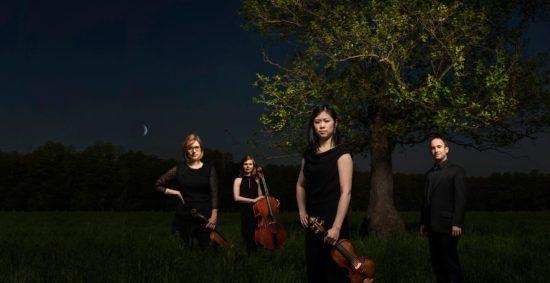 Flex Ensemble: The Arrival of Night - © Daniel Kunzfeld
