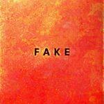 Die Nerven – Fake (Glitterhouse)