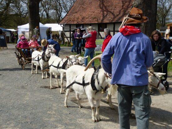 Frühlingsmarkt im Tierpark Sababurg in Hofgeismar am 28. und 29. April 2018