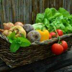 """""""Warburg isst"""" – Nachhaltig ernähren: Klima schützen"""