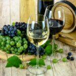 Wein und Kultur: Das Paderborner Weindorf 2018