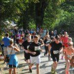 10. Sababurger Tierparklauf – voller Erfolg mit Teilnehmerrekord!