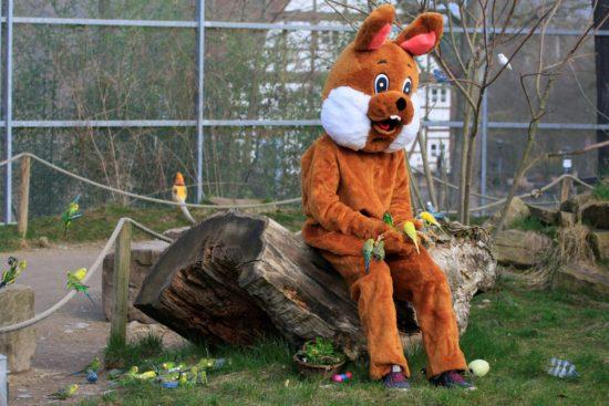 Tierpark Sababurg - auch zu Ostern einen Ausflug wert.
