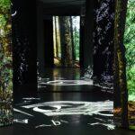 Zur magischen Lichtung: FinsterWald in der GrimmWelt