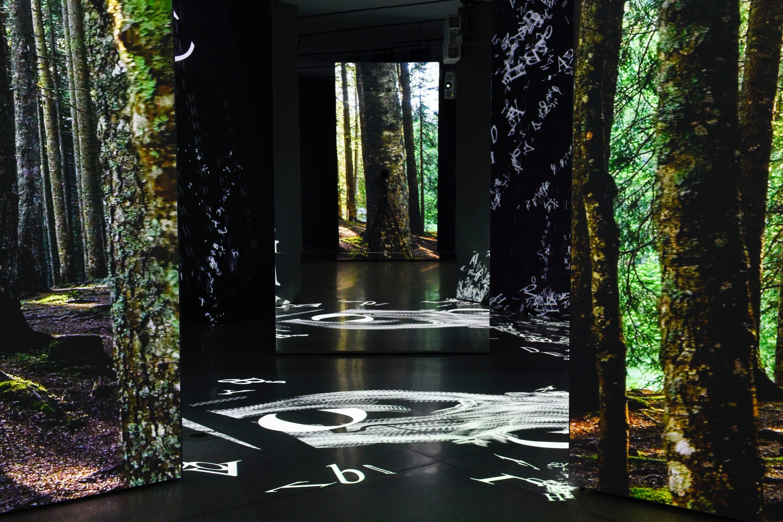 Die Erlebnisausstellung FinsterWald in der GrimmWelt Kassel. Foto von Nils Klinger