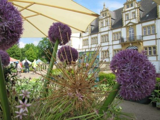Schloß Neuhäuser Gartentage: Hedera & Bux