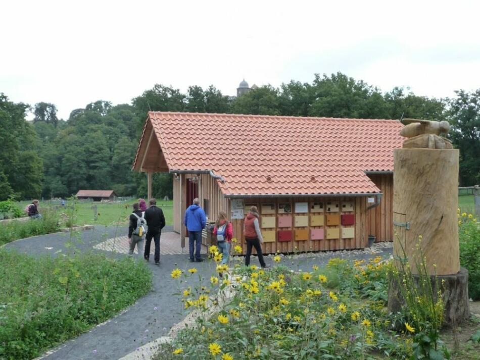 Tierpark Sababurg und Imkerverein Hofgeismar laden zum Aktionstag in der BienenWelt