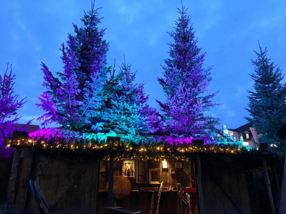 Der Plastikfreie Marchen Weihnachtsmarkt In Kassel Genuss