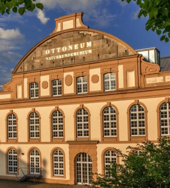 Das <strong>Kasseler Naturkundemuseum</strong> veröffentlicht informative Videoclips auf Facebook. Derzeit präsentiert das Naturkundemuseum die Sonderausstellung »<strong>Tierkinder</strong>«.   (c) Kassel Marketing GmbH