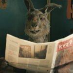 Die Känguru Chroniken Copyright X Filme, X Verleih 3