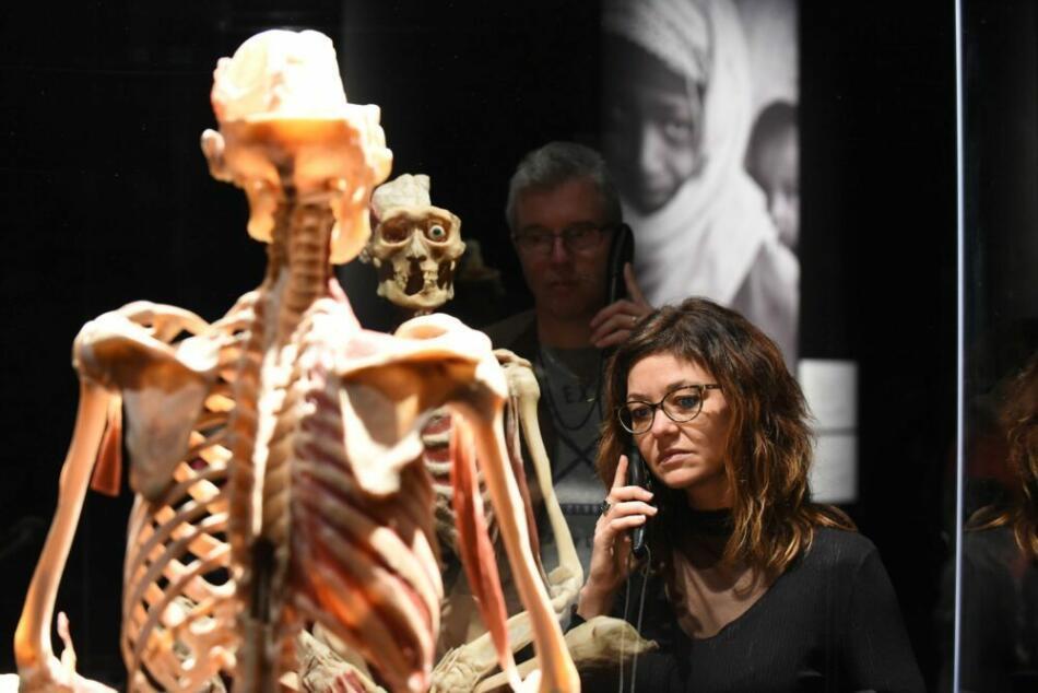 Ausstellung Körperwelten in Kassel: Verlängerung bis 6.9., Veranstalter erwarten Wiedereröffnung