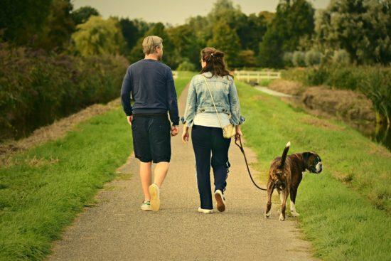Ostern und Corona: Was ist erlaubt in NRW, Hessen und Niedersachsen? Spazierengehen als Paar ist überall gestattet   (c) Mable Amber auf Pixabay