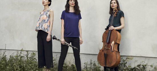 Kasseler Musiktage 2020: »Siehst du Musik?«