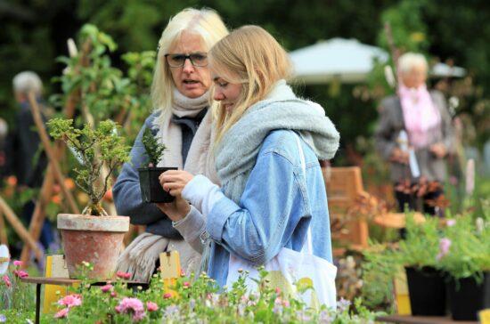Gartenfreunde können sich beim Herbstzauber Kassel inspirieren lassen und beim Garten-Festival schöne Pflanzen für den heimischen Garten aussuchen   (c) Evergreen GmbH & Co. KG