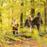 ABSAGE: Veranstaltungen des Nationalparks Kellerwald-Edersee pausieren bis auf Weiteres