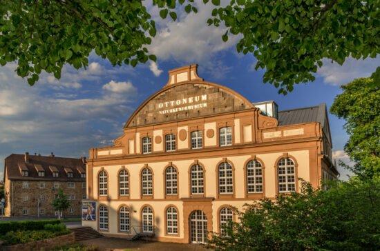 Kasseler Naturkundemuseum: Tierkinder-Ausstellung verlängert! Hier findest Du Alle Infos!