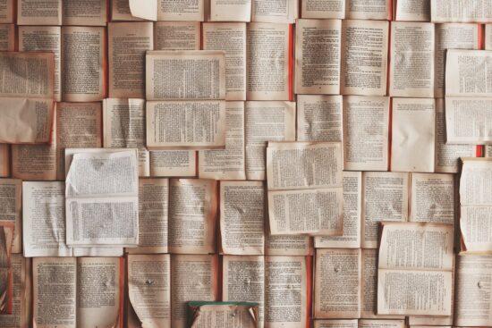 Zu den #allabendlichqueer - Lesungen laden dieLiteratuntenviele verschiedene Gäste ein. Darunter AutorInnen, LektorInnen und KünstlerInnen. Archivbild | (c) Foto: Pixabay - Free-Photos