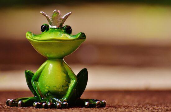 """Der Froschkönig ist eines zahlreicher <strong>Märchen</strong> der <a href=""""https://de.wikipedia.org/wiki/Br%C3%BCder_Grimm"""">Brüder Grimm</a>. Vielleicht wird dieses auch von Simsala Dimm und einer ihrer Gäste vorgelesen? Jeden Mittwoch um 18 Uhr kannst Du ein neues Märchen schauen.   (c) Pixabay"""