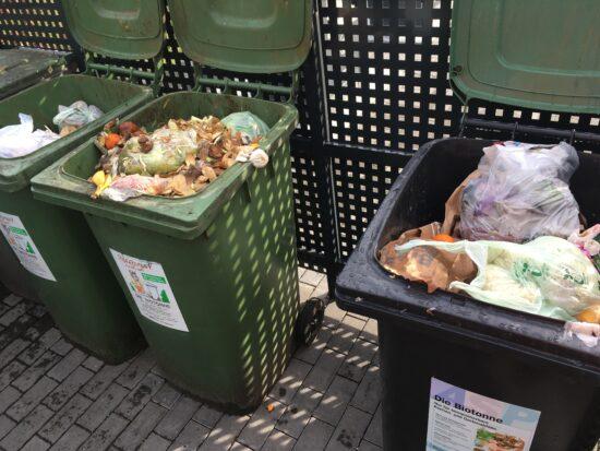 Plastiktüten haben im Bioabfall nichts zu suchen. | (c) Stadt Paderborn