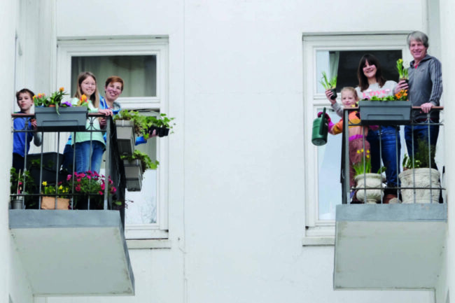 Das Netzwerk Nachbarschaft hat auch 2021 wieder die Umwelt im Blick: Das Projekt »Jede Wiese zählt!« zeichnet engagierte Wohnsiedlungen aus. - (c) Netzwerk Nachbarschaft