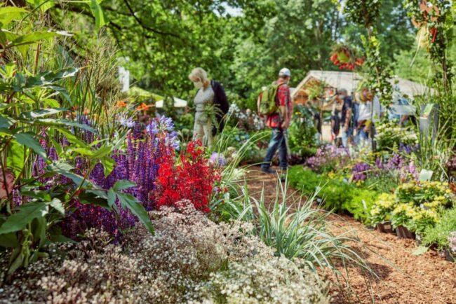 Bunte Blumen säumen die Wege. Ein Traum für jeden Hobby Gärtner und Naturliebhaber. Durch diese Inspirationen kann auch der eigene Garten verschönert werden. Ein weiteres  Highlight der Ausstellung ist die Blumeninsel Siebenbergen.