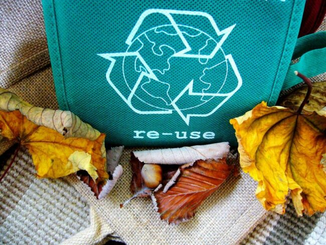 Die Marburger NPO TERRA TECH setzt sich u.a. für Recycling ein. Beim diesjährigen 50. Türöffner-Tag der Maus lädt sie zum gemeinsamen Aktiv werden ein.   (c) Pixabay