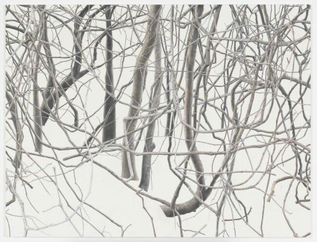 Toba Khedoori Ausstellung in Kassel   »Untitled branches«    1 2011 12   (c) Toba-Khedoori Courtesy the artist Regen Projects and David Zwirner