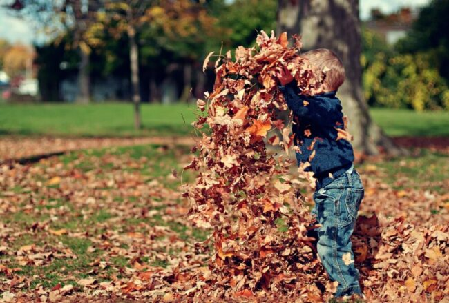 Der Herbst ist besonders für Kinder ein echtes Erlebnis. Im Freilichtmuseum in Detmold warten spannende Kurse in der Natur auf sie. | (c) Pixabay