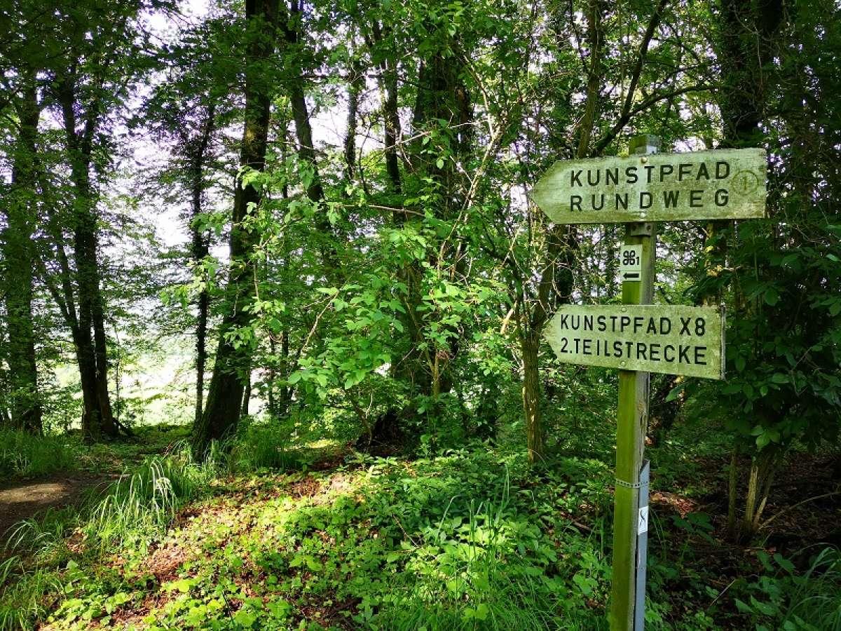 Waldbaden - Meditative Wanderung - Burgruine Heiligenberg - Felsberg