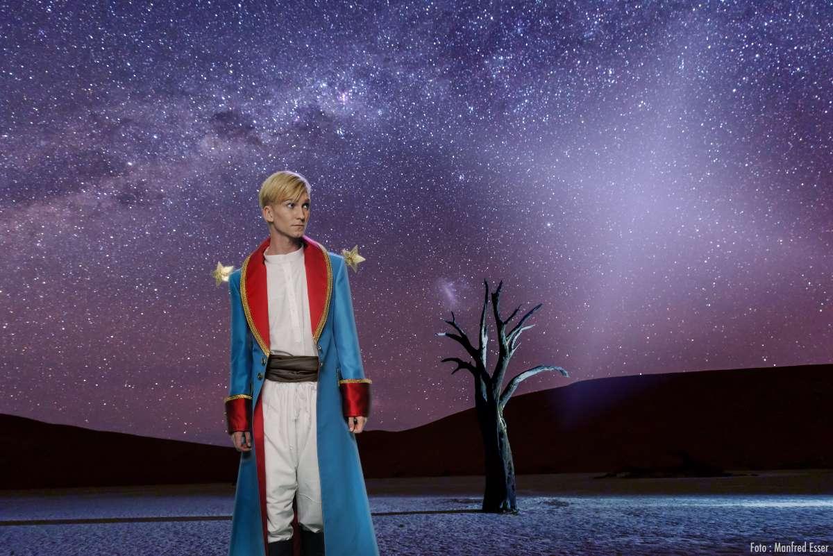 Der Kleine Prinz – Das Musical
