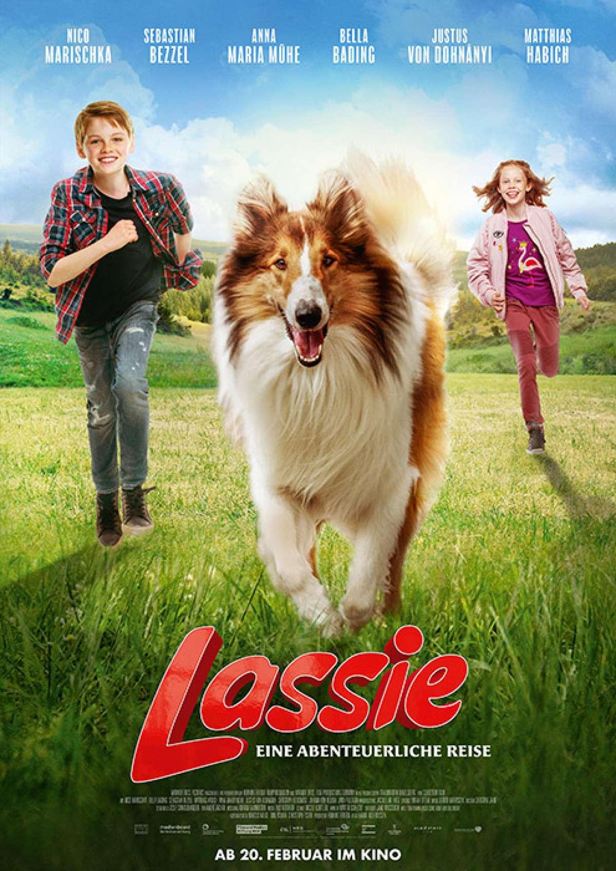 Lassie - Eine abenteuerliche Reise - Kino  - Bad Driburg