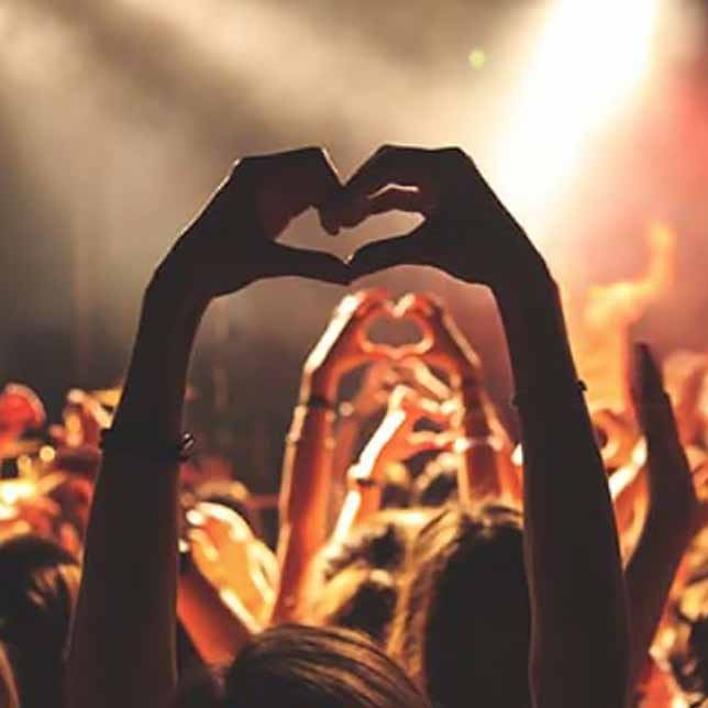 Wildwechsel - Veranstaltungen in Kassel, Paderborn, Marburg, OWL und Nordhessen - Termine, Events, Partys, Veranstaltungen, Kultur in Kassel, Paderborn, Marburg, Warburg, Schwalmstadt, OWL, Nordhessen